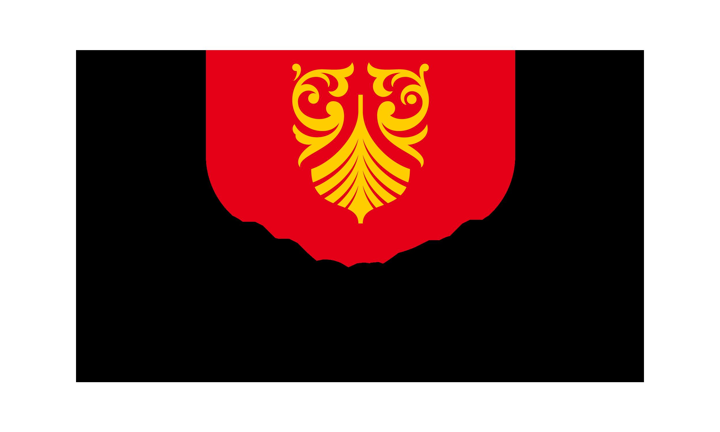 Vestfold og Telemark fylkeskommune står sentralt for næringsutviklingen i Electronic Coast